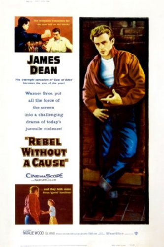 rebel without a cause essay questions